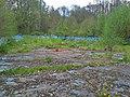 Naturbad Niederwiesa Becken.jpg