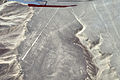 Nazca Lines Hummingbird.jpg