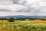 Near Dadesheim - Saxony-Anhalt (28004884071).jpg