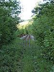 Nebenbahn Finnentrop-Wenholthausen (5777487937).jpg