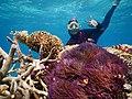 Nemo dan Mantan.jpg
