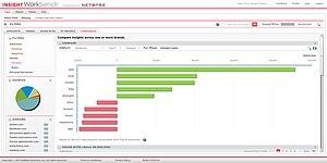 NetBase Solutions - Screenshot of NetBase Insight Workbench dashboard