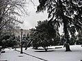 Nevada Enero 2k9 Madrid (3222508290).jpg