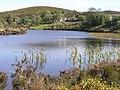 New Lough, Gortin - geograph.org.uk - 130538.jpg