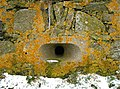Newburgh, Gunport, lichens and ice at Knockhall Castle - geograph.org.uk - 735605.jpg