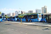 Photo of buses at Solomou Square in Nicosia