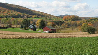 Morris Township, Tioga County, Pennsylvania Township in Pennsylvania, United States