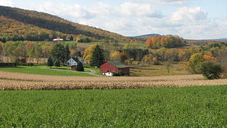 North Central Pennsylvania - Agriculture plays a significant part in the economy of North Central Pennsylvania. Almost one quarter of its land is used for agriculture.