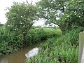 North Walsham and Dilham Canal - geograph.org.uk - 469668.jpg