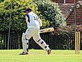 Nuthurst CC v. The Royal Challengers CC at Mannings Heath, West Sussex, England 04.jpg