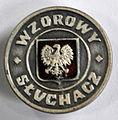 Odznaka WS.JPG