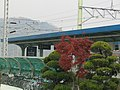 Oido Station (The last station of the Subway Line No.4) - panoramio.jpg