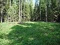 Okulovsky District, Novgorod Oblast, Russia - panoramio (3).jpg