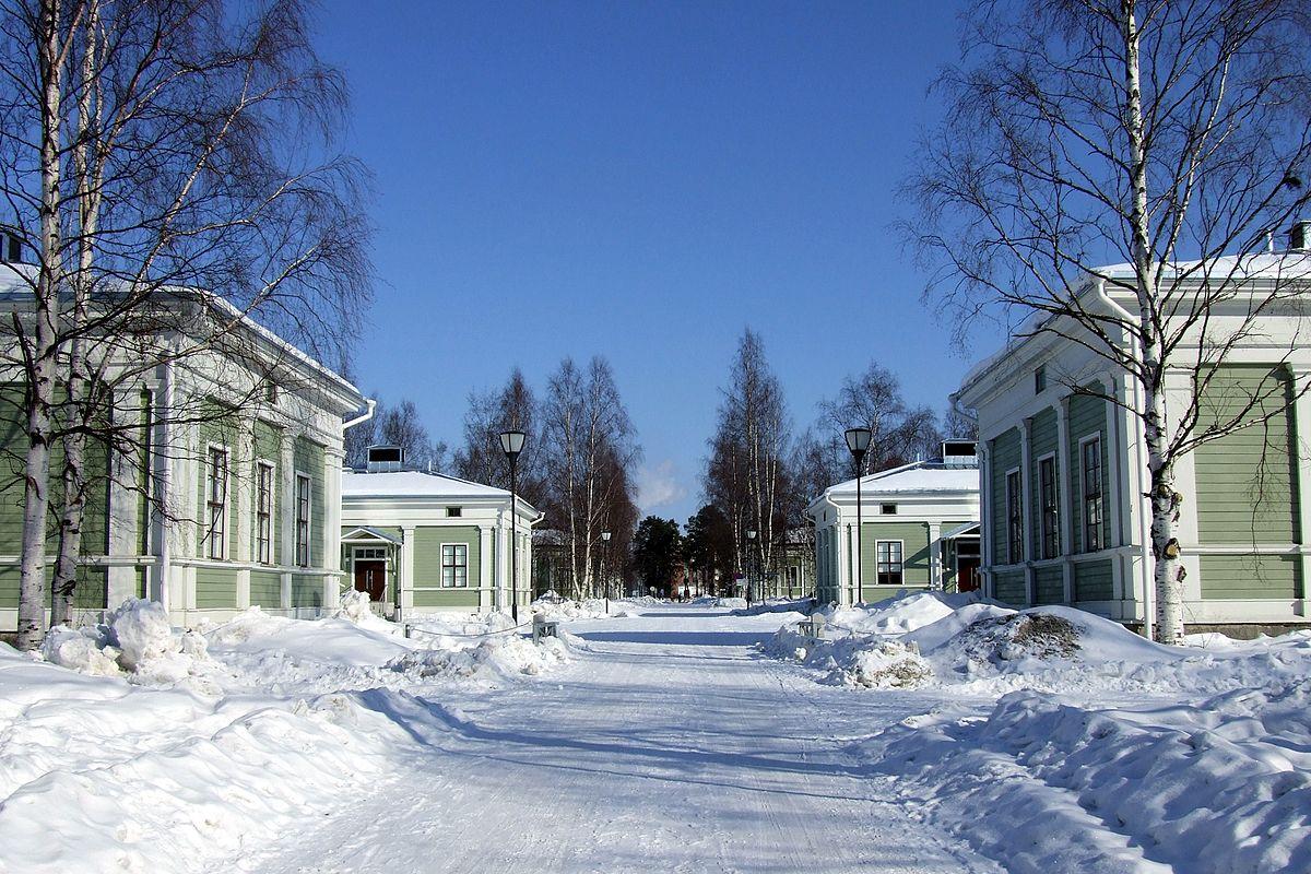 Oulun Luovi