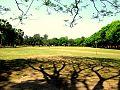 Old Folklore Square, University of Rajshahi ...jpg