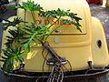 Old Street Buggie (6545943901).jpg
