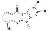 Ophiuroidine.png