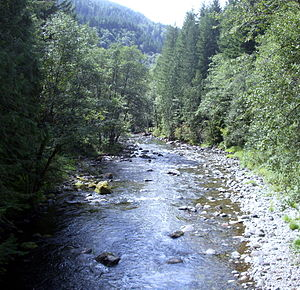 Oregon Salmon River Clackamas County from bridge looking west P1651.jpeg