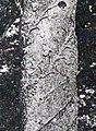 P1210880 croix detail colonne rmail.jpg