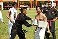 PENCAK SILAT - Indonesian martial art.jpg