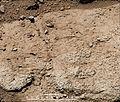 PIA16927-MarsCuriosityRover-CumberlandBedrock-20130219.jpg
