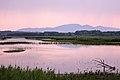 Padule-di-fucecchio-al-tramonto-area-le-morette.jpg