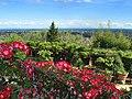 Panorama sulla valdinievole dal giardino.jpg