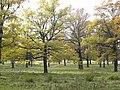Panoramio-39827216.jpg