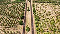 Parallel roads among palms (Unsplash).jpg