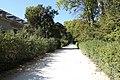 Parc du château de Fontainebleau le 12 septembre 2014 - 06.jpg