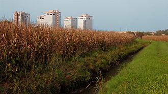 Parco Agricolo Sud Milano - A view of the park showing rural areas near buildings from the outskirt of Milan