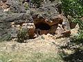 Paridera Cueva del Río Piedra.jpg