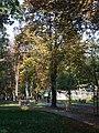 Park miejski im. S. Staszica w Kielcach (2) (jw14).JPG