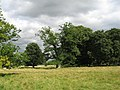 Parkland^ - geograph.org.uk - 544085.jpg