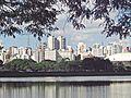 Parque do Ibirapuera vista.jpg