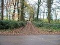 Path towards Blockley - geograph.org.uk - 1591010.jpg