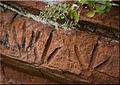 Paw prints amambay, rock art in Amambay, Paraguay.jpg