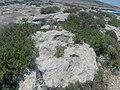 Pembroke, Malta - panoramio (49).jpg