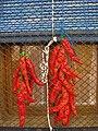 Penjoll de pebreres de pimentó a Elche (la Manxa).jpg