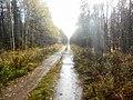 Permskiy r-n, Permskiy kray, Russia - panoramio (768).jpg