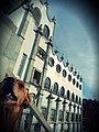 Perro en la Universidad de Guanajuato.jpg