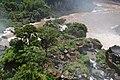Perspektiven des Parque nacional Iguazú 71 (21928933209).jpg