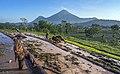 Petani Indonesia dengan batik.jpg