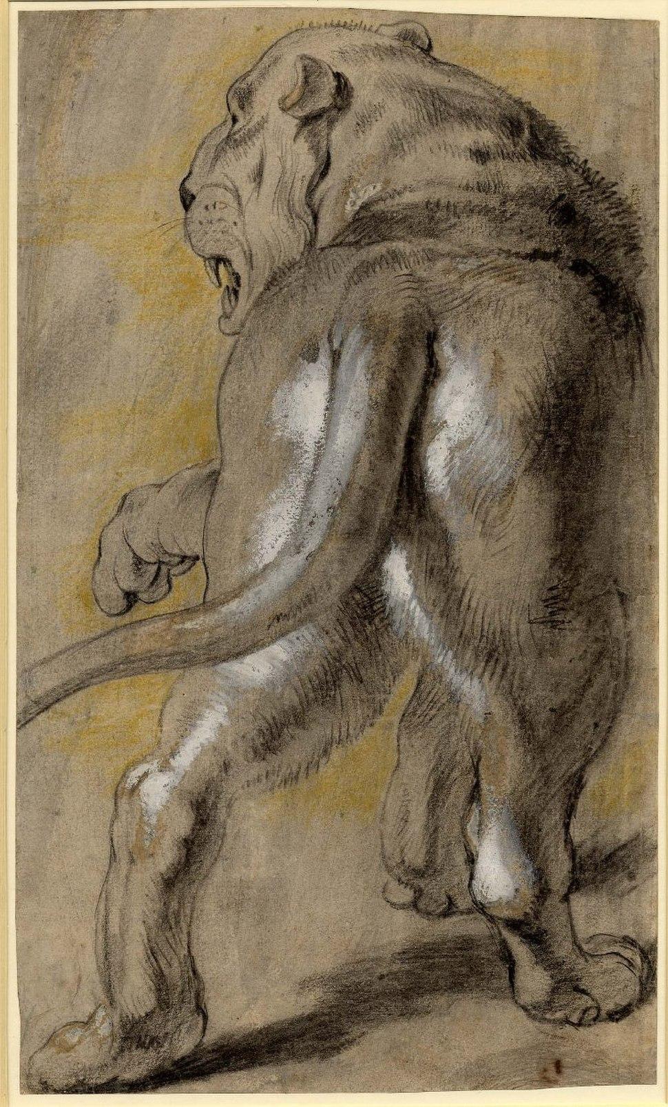 Peter Paul Rubens 077