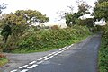 Peter Tavy, lane to Wapsworthy - geograph.org.uk - 1001901.jpg