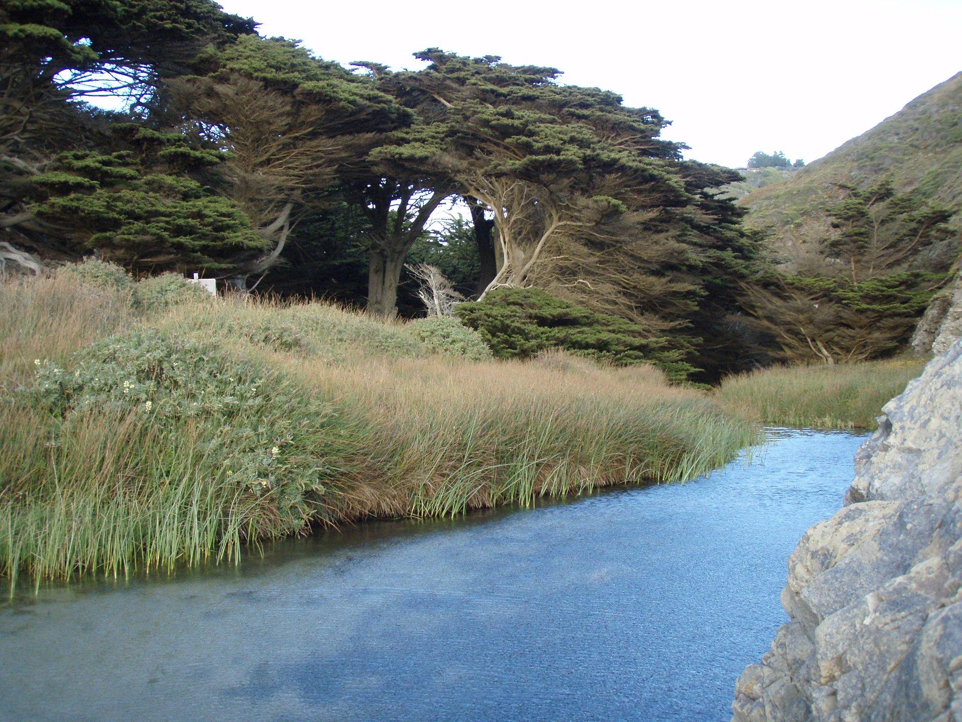 the beach stream