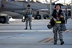 Phase II Operational Readiness Exercise (8473415445).jpg