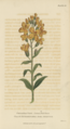 Plate 15 Cheiranthus Cheiri - Conversations on Botany-1st edition.tiff