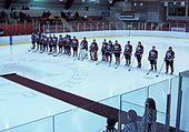 Playoff Brampton-Montreal 001.jpg