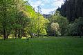 Polenztal - Elbsandsteingebirge - WLE 2015 - 07.jpg